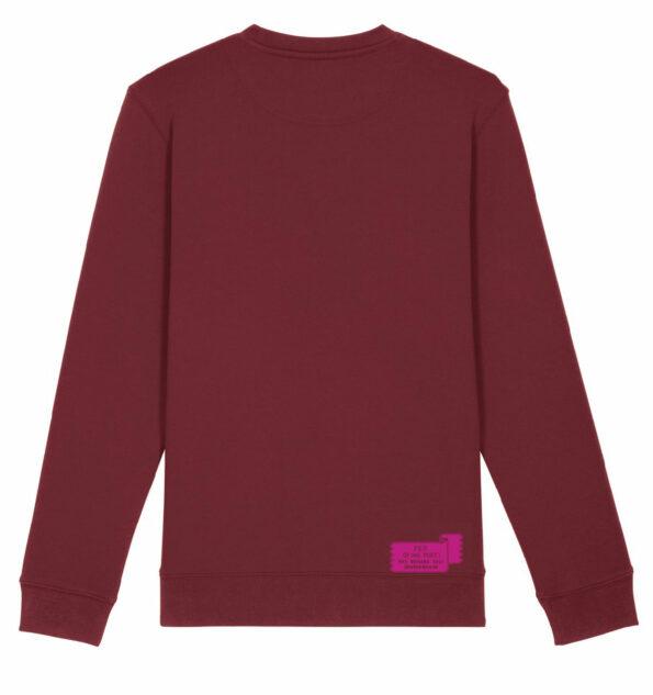 EvaMouton_Ros_Sweater_Burgundy_Back_fier